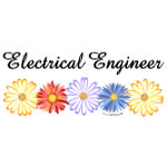 Electrical Engineer Asters