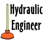 Hydraulic Engineer Plunger